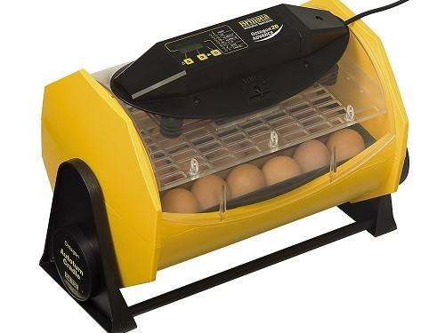 Brinsea egg incubator Fully automatic
