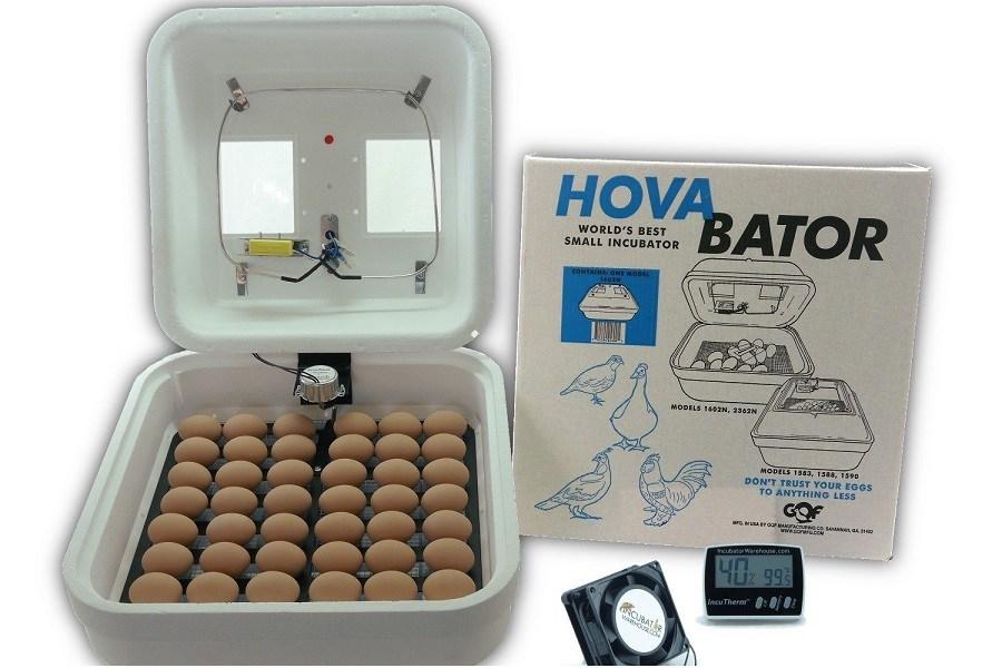 HovaBator Advanced Egg Incubator Combo Kit
