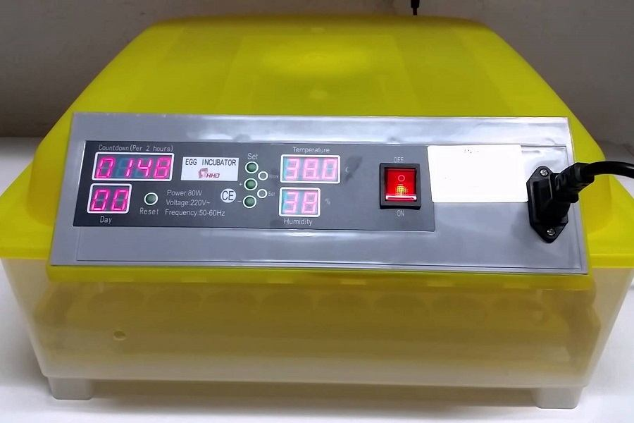 Yellow Digital Egg Incubator