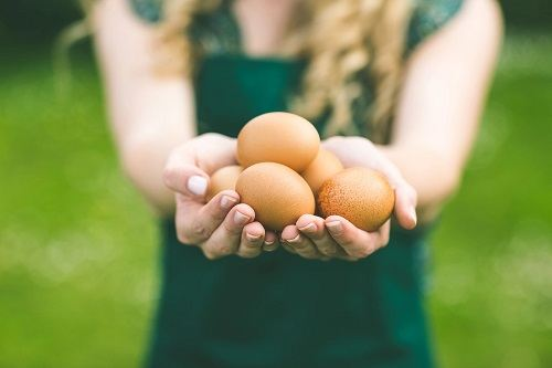 Woman Holding Eggs In Hands